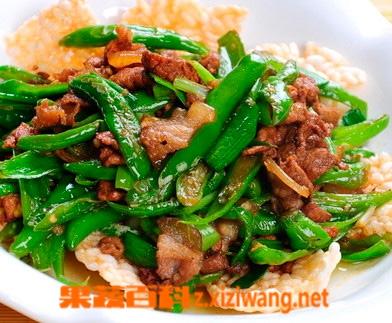 果蔬百科辣椒炒肉