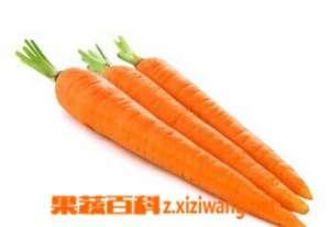 胡萝卜能美容吗 胡萝卜的美容功效